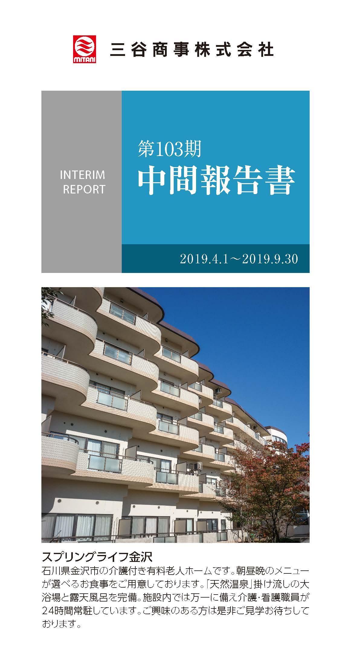 2019年発行 Interim Report
